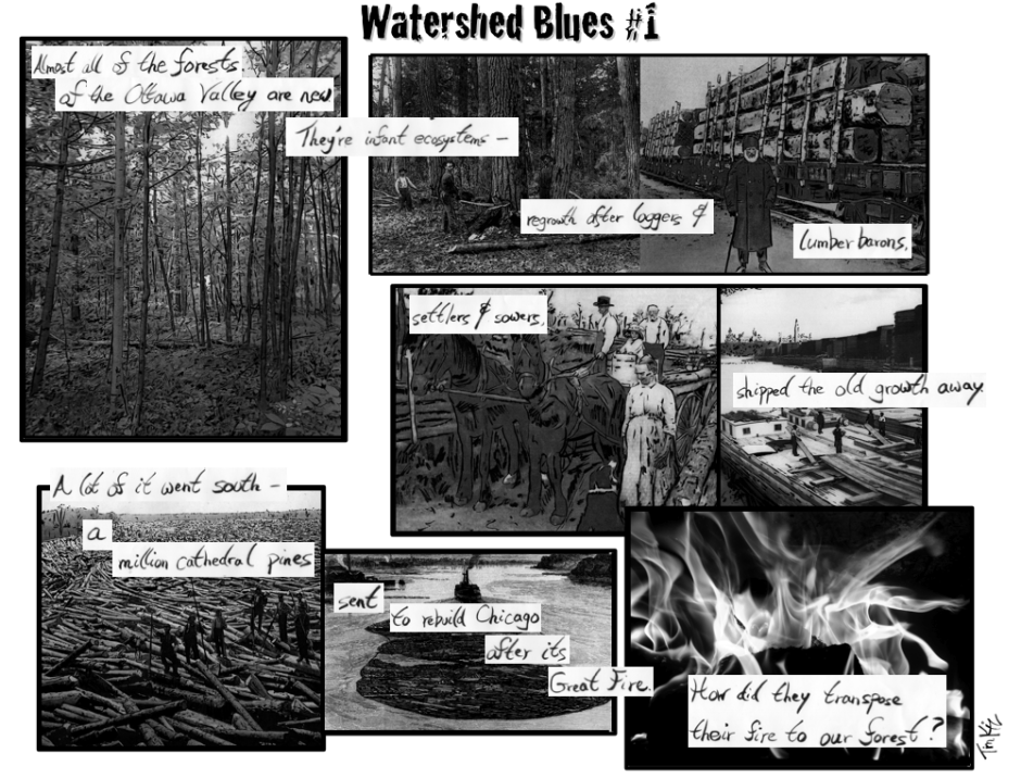 Watershed Blues 1