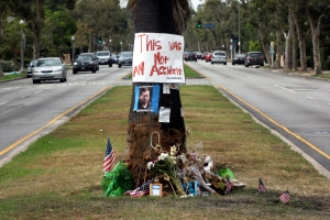 Tree at crash site of journalist Michael Hastings death